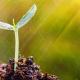cómo-atraer-prosperidad-abundancia-y-todo-lo-bueno-a-tu-vida